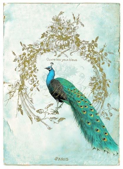 Развиващие задания. С павлинами Павлин открытки рисунки. Открытка павлин с распущенным хвостом. Открытка павлин скачать бесплатно. Павлин открытка рисунок. Открытка с павлином в день рождения. Открытка Жизнь прекрасна! Как открытка анимация с павлином яркой жизни!