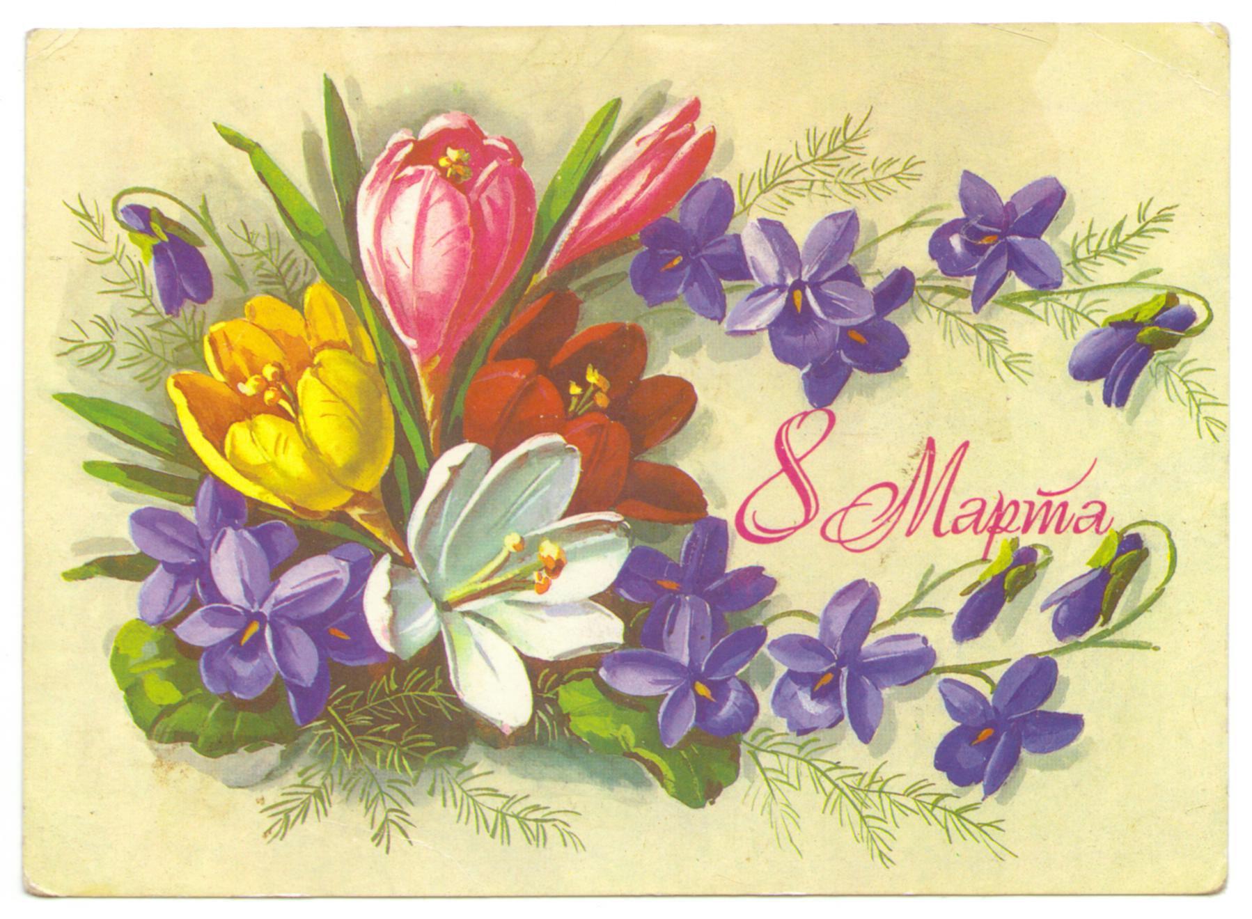 наше полезная открытка на 8 марта врожденной