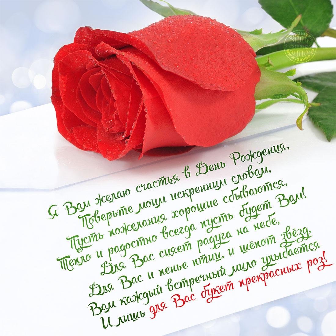 мало картинки цветы со стихами имя роза даже ради дочки