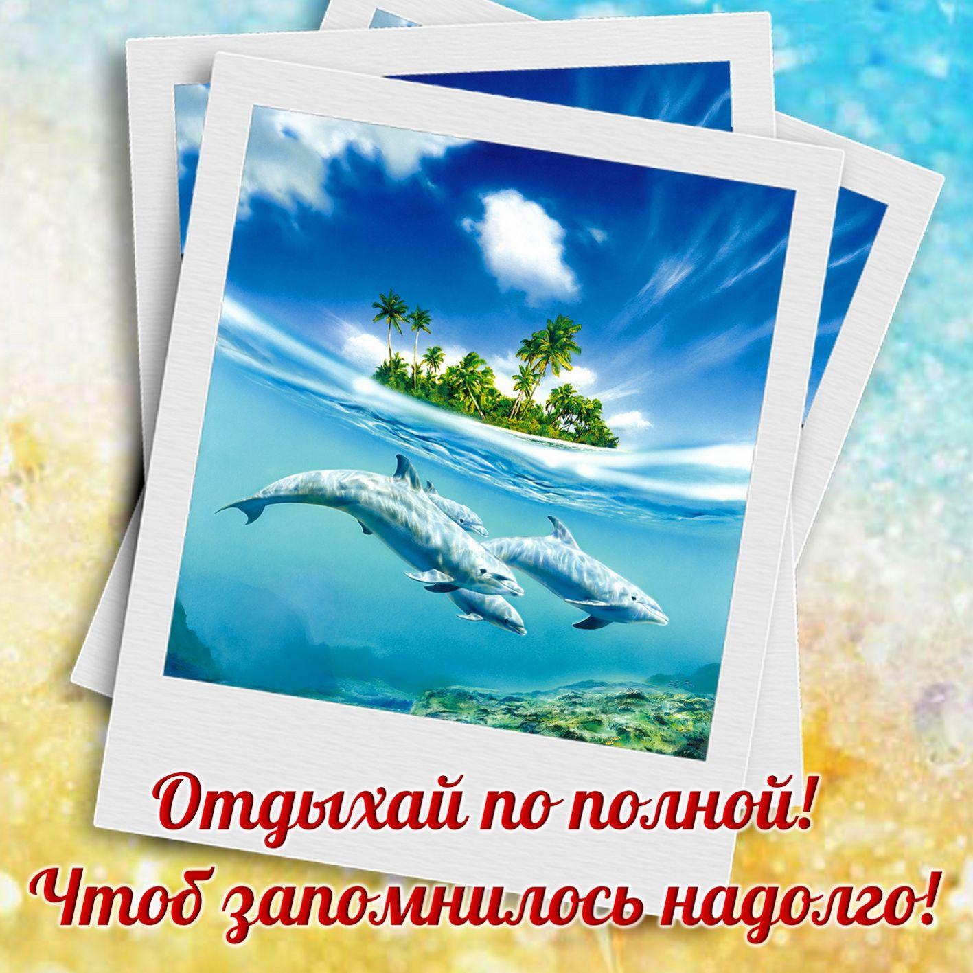 Развиващие задания. С дельфинами Картинки с дельфином скачать бесплатно. Красивые картинки открытки с дельфином. Скачать картинки с дельфином. Смешные картинки с дельфином. Дельфины открытки высокого качества. Дельфины открытки картинки. Картинки дельфинов нарисованные.