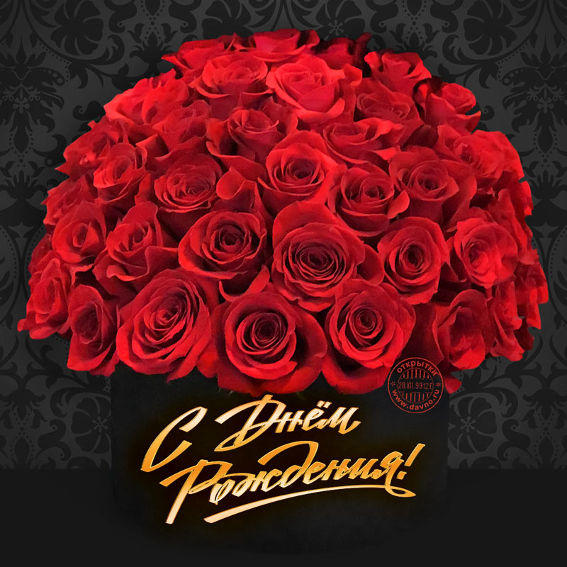 С днем рождения картинки с розами женщине
