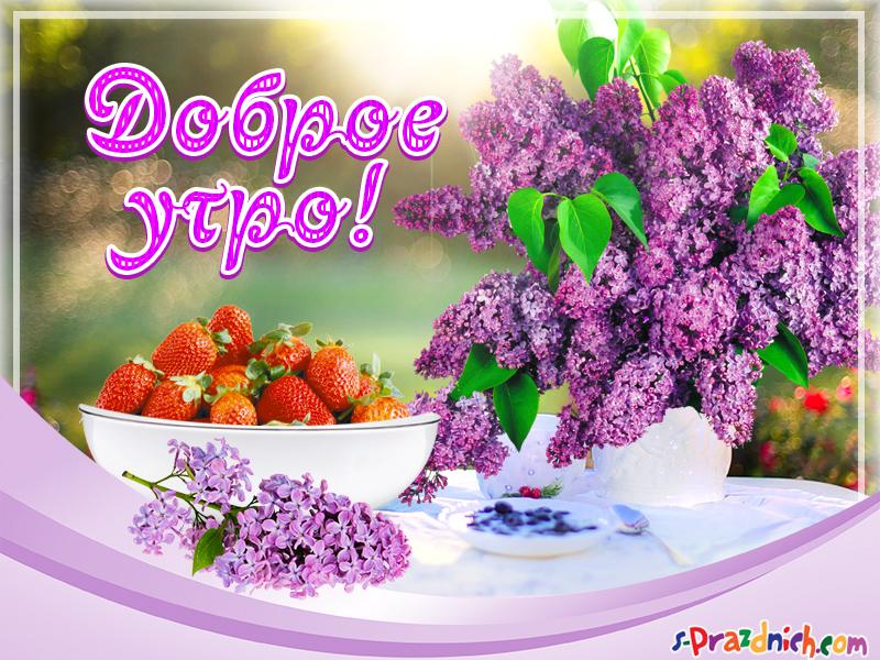 Открытки Открытка с пожеланиями счастливой весны и цветущей сиренью.  Красивые открытки с сиренью. Открытки с сиренью.  Открытка Пусть удачным будет день, с белыми бабочками порхающий над вазой с Сиреневой фиолетовой и белой сиренью.