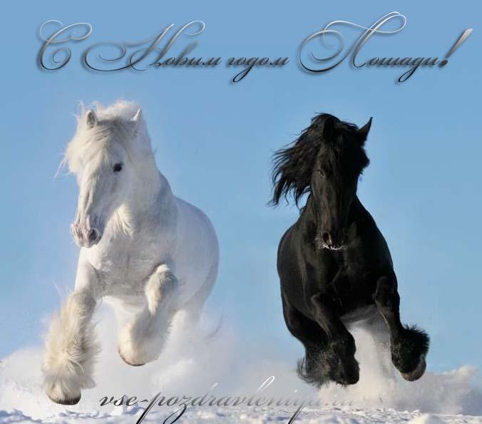 Развиващие задания. С лошадьми Новогодние открытки с лошадьми. Прикольные открытки с лошадью. Открытки поздравления скачать открытки с лошадьми. Открытка с лошадью на день рождения. Открытка с лошадьми. С днём рождения открытка с лошадью. Открытка с лошадью.
