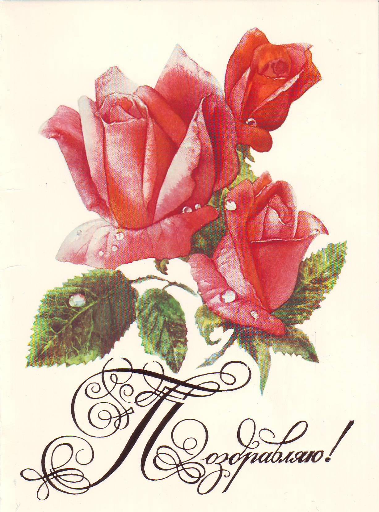 картинки открытки поздравляю возможности виртуальной