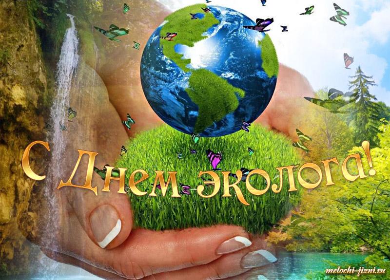 заныкала день эколога картинки радости всем твоей