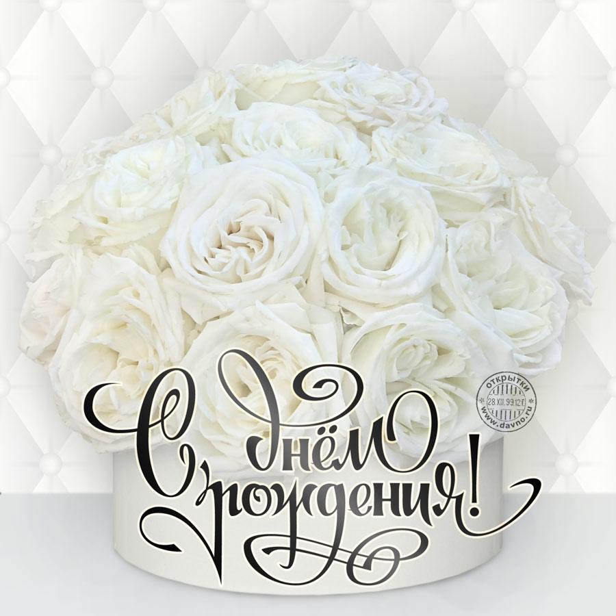 Развиващие задания. С белыми розами Открытки с 8 марта с белыми розами, открытка с днём рождения с белыми розами. Открытка с белыми розами. Картинки С днём рождения с белыми розами. Картинки девушка с белыми розами. Картинки с белыми розами. Картинки девушек с белыми розами.
