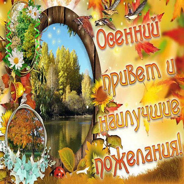 осень картинки с пожеланиями петербуржцы
